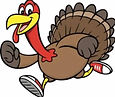 turkey pic cropped.jpg