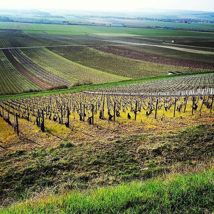 Transair3 visite en Champagne Ardennes _