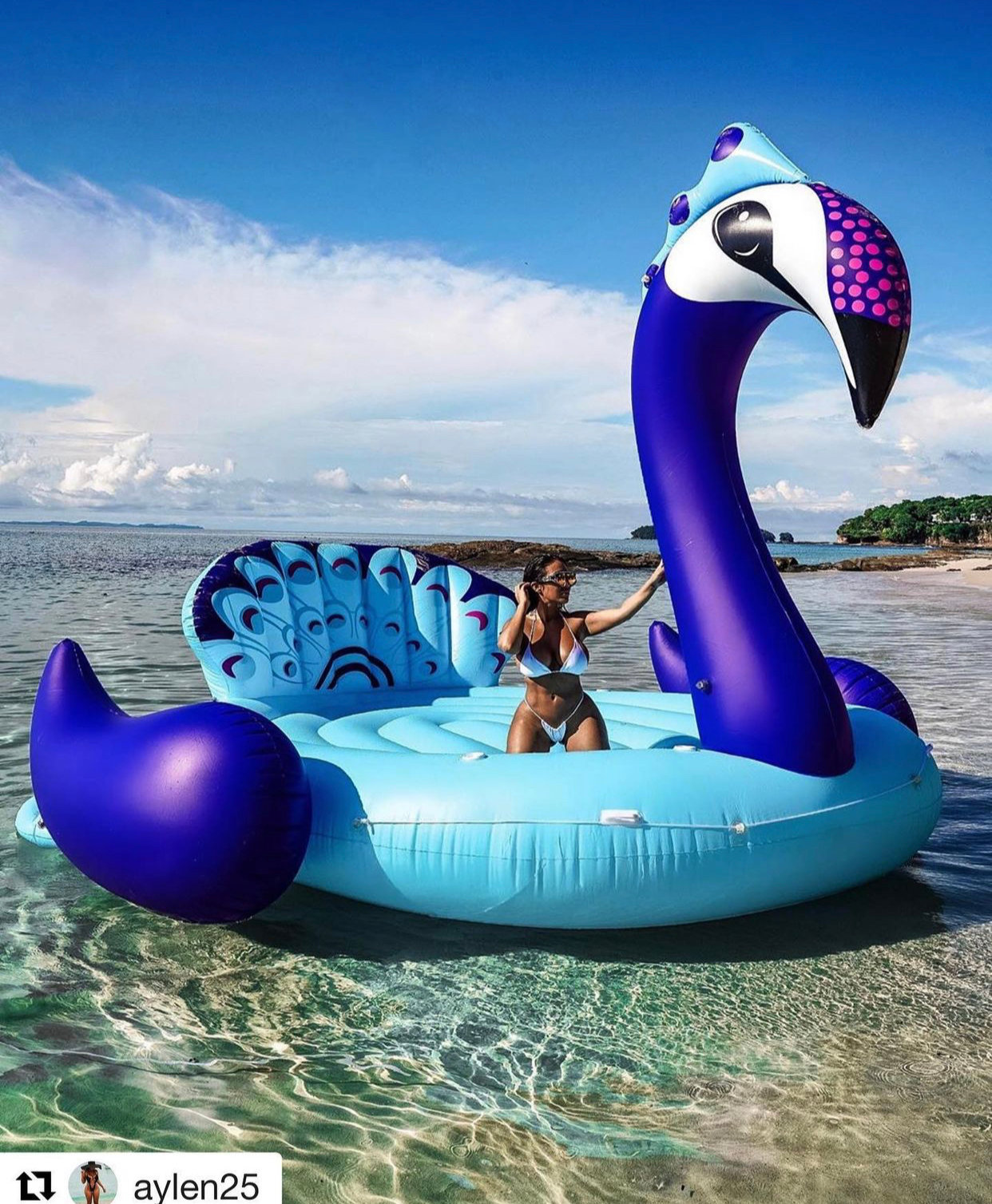 6 Person Inflatable Peacock