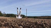 Croûtes-célébration terreuse ©Demi-Sel Production-1PAINT.jpg
