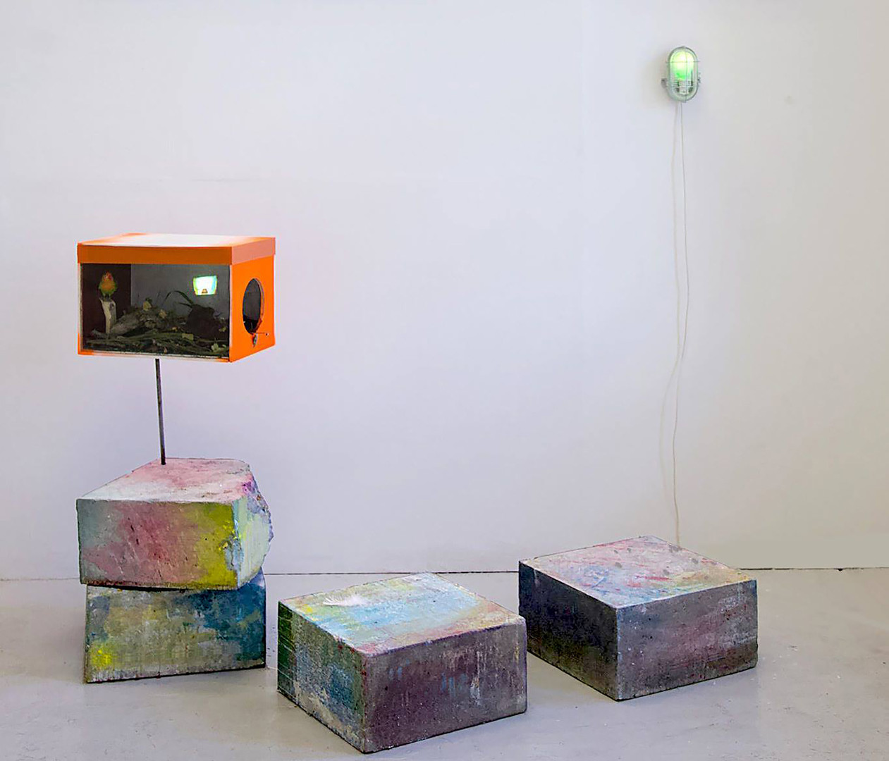 Birdhouse Tableau, (semi-static image), 2018
