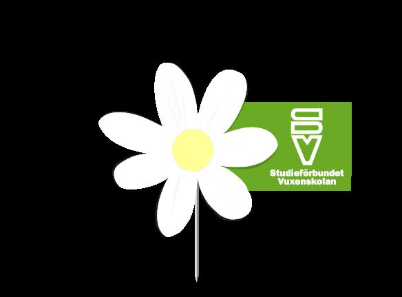 vit_blomma.png