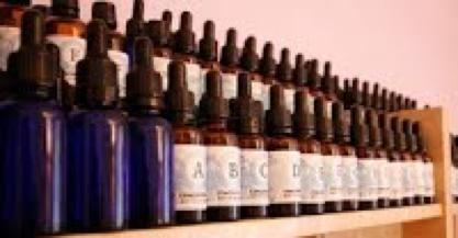 Homeobotanical herbs