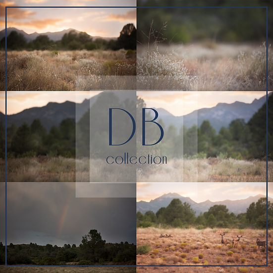 Mountain Field  Digital Background Collection