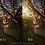 Thumbnail: Vibrant Lights - Photoshop Action