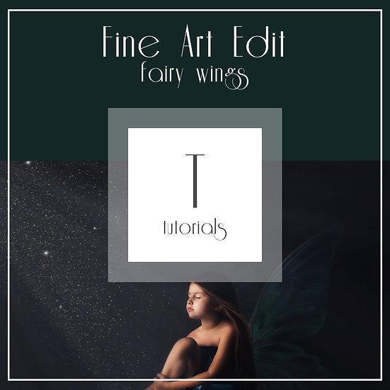 Fairy Wings - Fine Art Edit