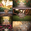 Thumbnail: Toddler Chair Digital Background Collection