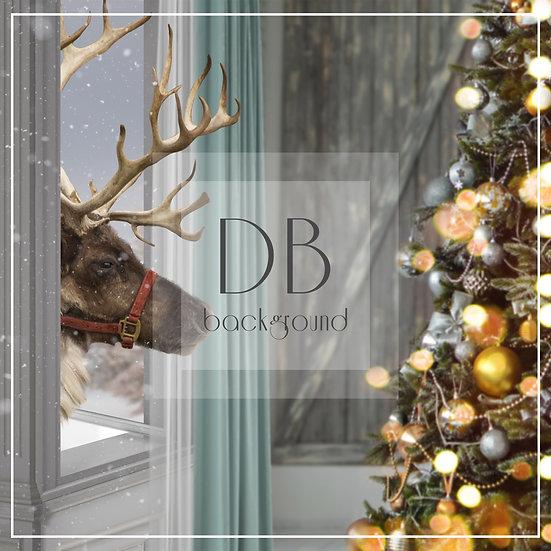 Reindeer Window