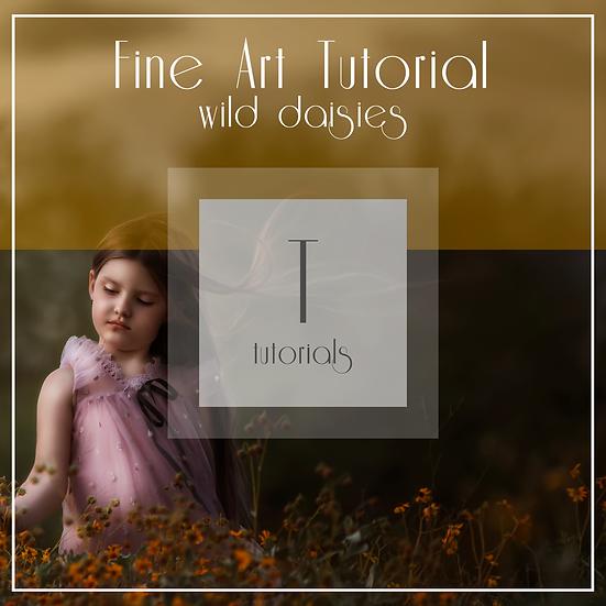 Wild Daisies  -  Fine Art Edit