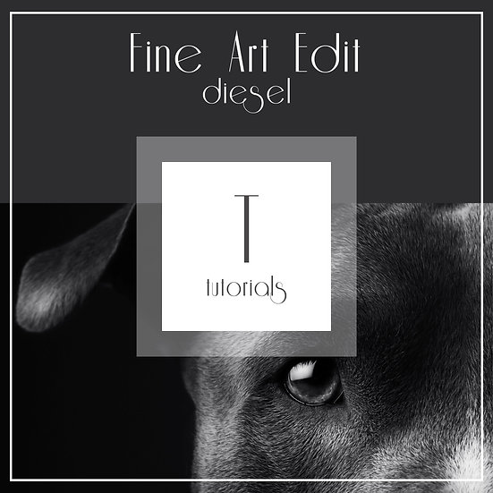 Diesel - Fine Art Edit