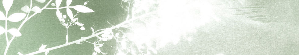 fond_cyanotype_contact.jpg