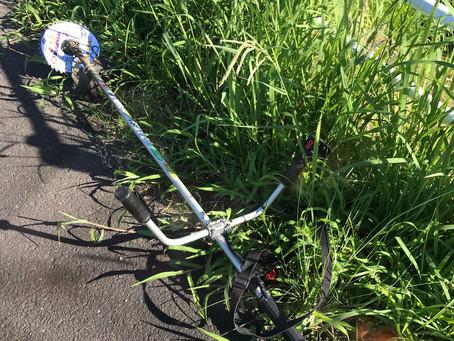 本日暑さを避けて午前8時に草刈り集合!