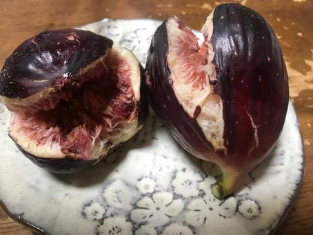 菌ちゃん野菜のつくり方(長周新聞より)