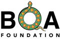 The Boa Foundation - Logo.png
