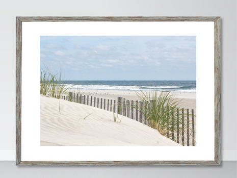 Beach & Coastal