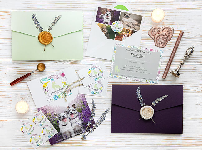 GiftEnvelopes_edited.jpg