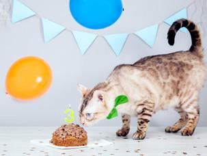 Happy 3rd Birthday, Oliver!
