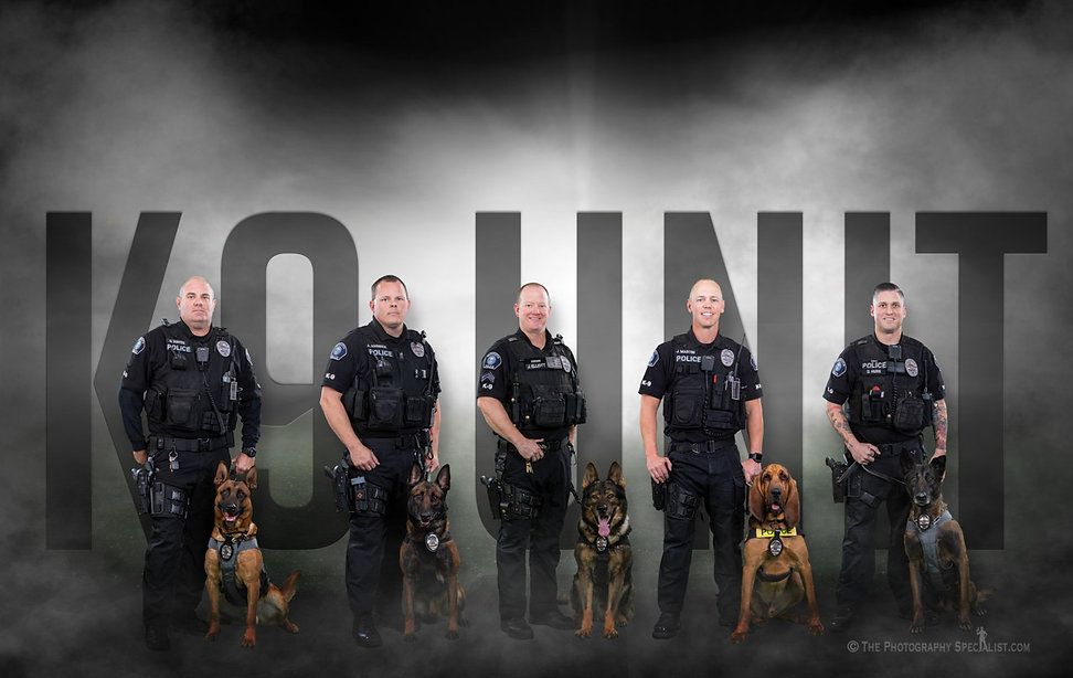 paws 4 law cover photo.jpg