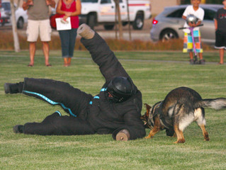 """Murrieta """"National Night Out"""" Event - Paws4Law Foundation"""