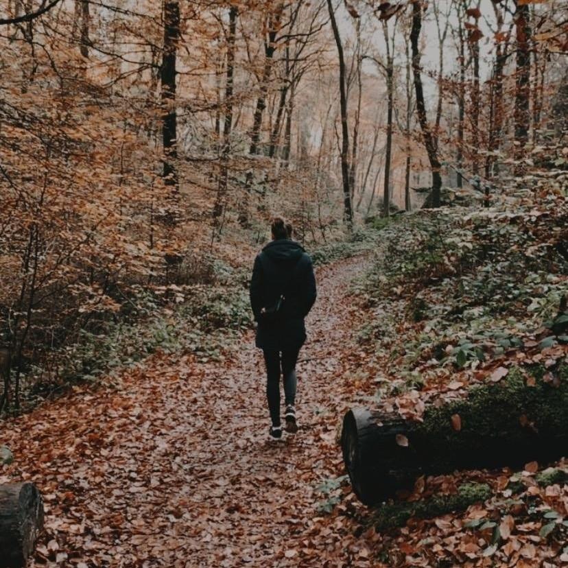 Roos aan het wandelen. Bewegen is belangrijk voor een goede gezondheid