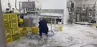 cleaning of Dairy factory equipment