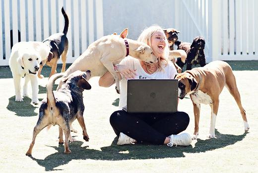 pet welfare advocate