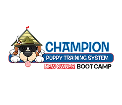 BootCampChamp-long_logo.png