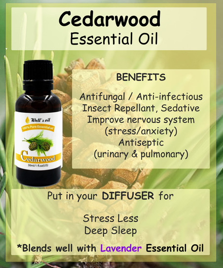 What is Cedar Wood Essential Oil?