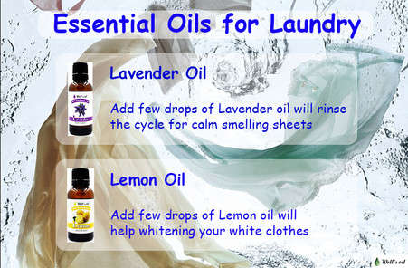 Best Essential Oils for your Clean Laundry!