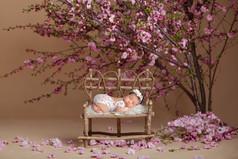 Cherry-blossom-heart-bench-download.jpg