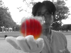 L'Artiste Go Segawa