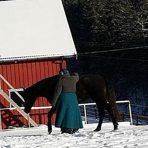 Tro på hesten din!__De fleste jeg møter