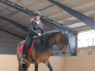 Mitt møte med Akademisk ridekunst og praktikantperioden hos Monika Sanders
