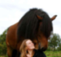 kommmunikasjon med hest