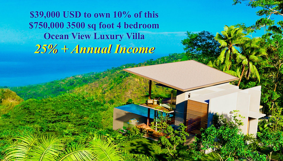 25% annual income-zoomed-2000xCarara Vil