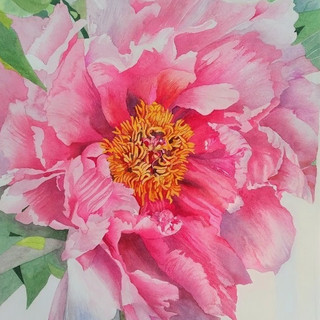 The last of the paeonies