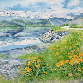 Dandelions and mountain lake at Voss