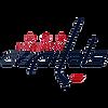 washington-capitals-fan-gears-shop-logo.