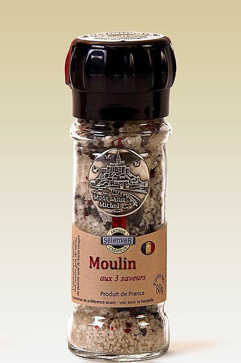 Moulin aux 3 saveurs