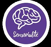 sensorialité.png