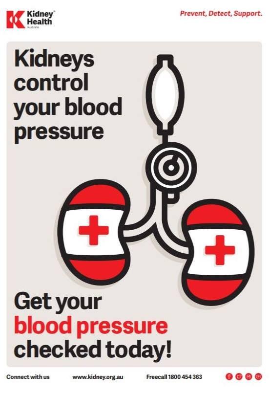 Kidney Health.jpg