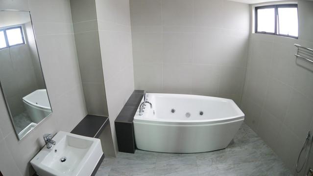 SUPER EXECUTIVE BATHROOM.JPG