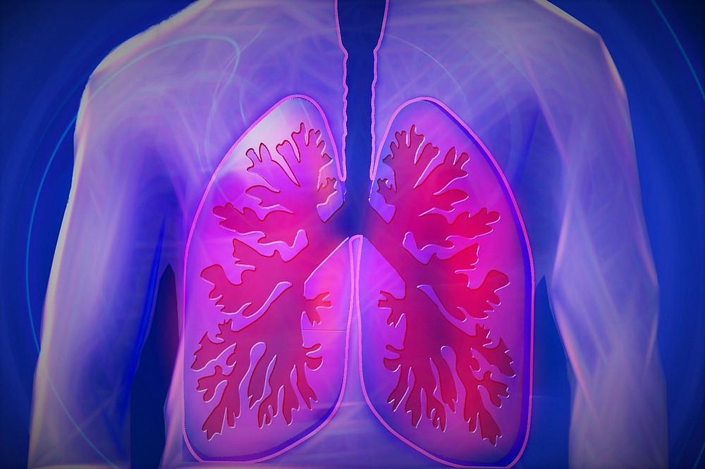 Astma, keuhkot