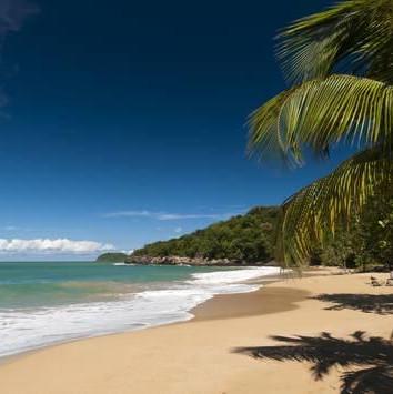 sergio-pitamitz-la-perle-beach-deshaies-