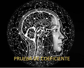 Pruebas de Coeficiente intelectual, CI, evaluación de capacidades de aprendizaje y de desarrollo