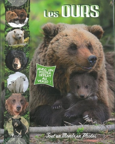 Les ours - Collection tout un monde en photo - Editions Piccolia