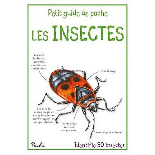 Les Insectes - Petit livre de poche -  Piccolia - Livre enfants