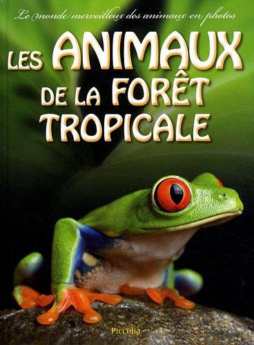 Le monde merveilleux photos - Les Animaux De La Forêt Tropicale - Piccolia