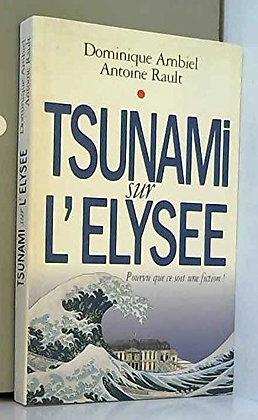 Tsunami Sur L'elysée - Pourvu Que Ce Soit Une Fiction - Dominique Ambiel