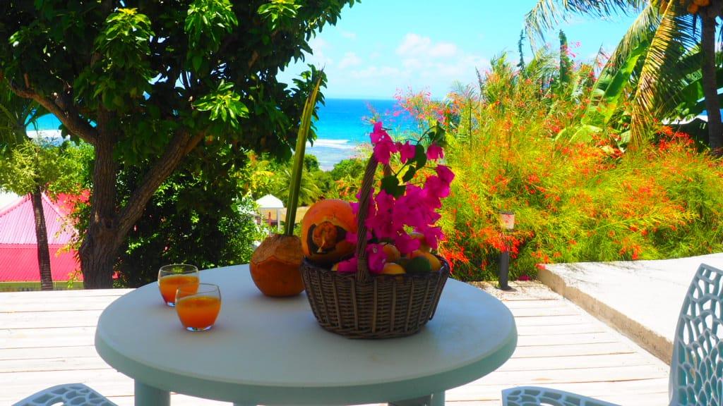 B3 Terrasse  vue jardin et mer